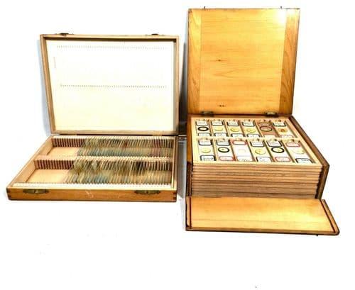 Antique Large Quantity of Microscope Slides Wooden Collectors Box T Gerrard & Co
